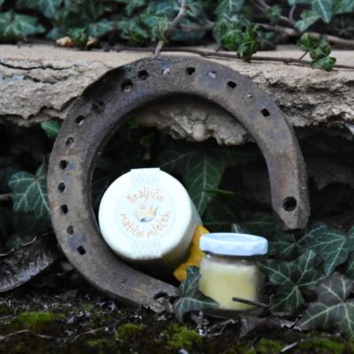 Medeni studenec matični mleček in cvetni prah